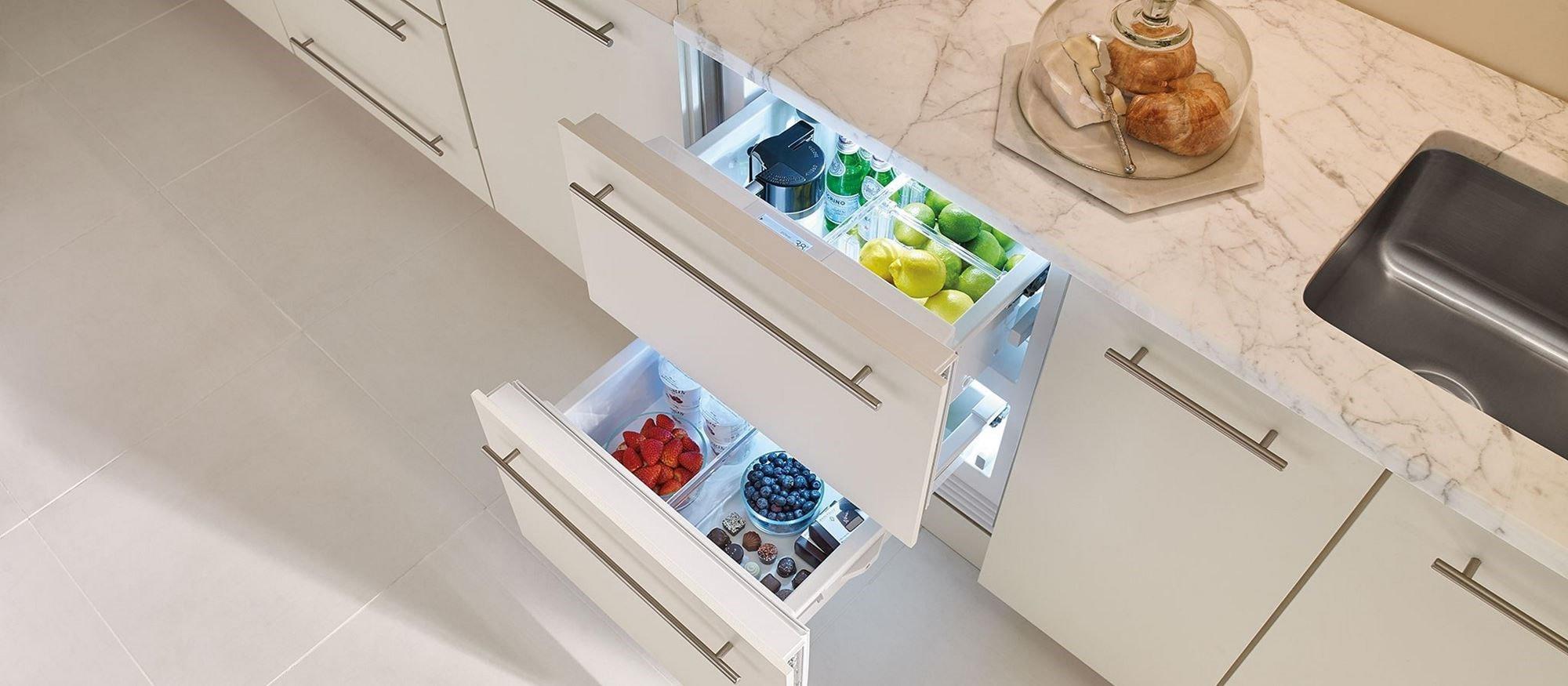 Sub Zero 24 Refrigerator Drawers Panel Ready