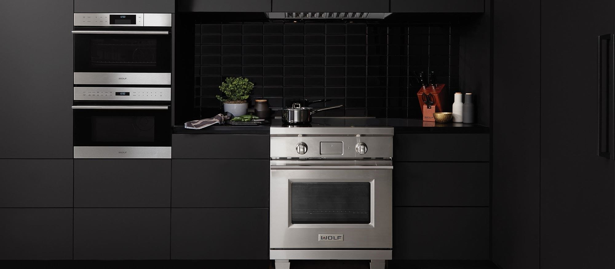 "Wolf 30"" Transitional Induction Range (IR304TE/S/TH)"